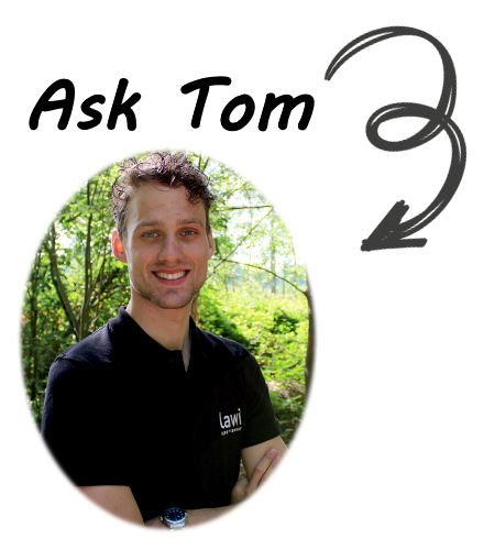 ask tom2.png
